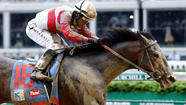 LOUISVILLE, Ky. -- The horse with the short name and the long stride won the Kentucky Derby here Saturday. Fans of Orb, and headline writers worldwide, rejoiced.
