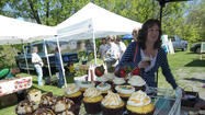 Saucon Valley Faremers Market
