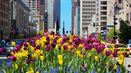 Spring on Michigan Ave.