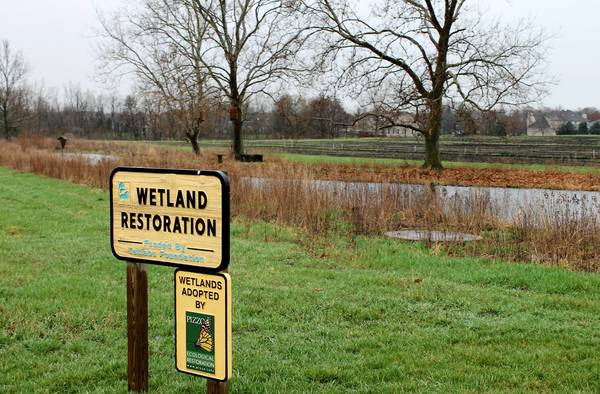 The McDonald Farm contains a wetland restoration area in one part of the property.