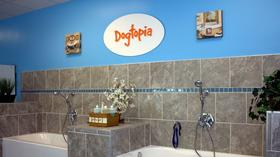 Dogtopia Open House in Canton