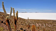 Bolivia: Traversing the Andean plateau
