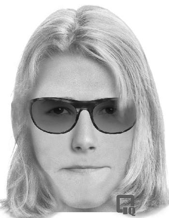 A composite sketch of a woman who allegedly offered a ride to a girl walking to Oak Terrace School in Highwood.