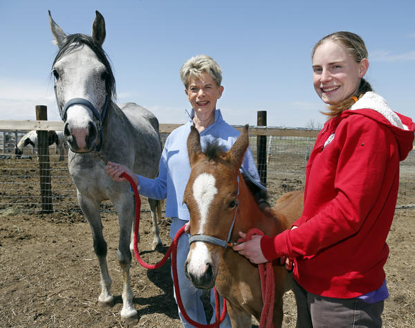 Margaret Forseth, owner of El Jo Mar Arabian Horses, center holds the mare Eljomar Gida as Brittany Walberg, manager, holds foal Eljomar Amin Tuesday.