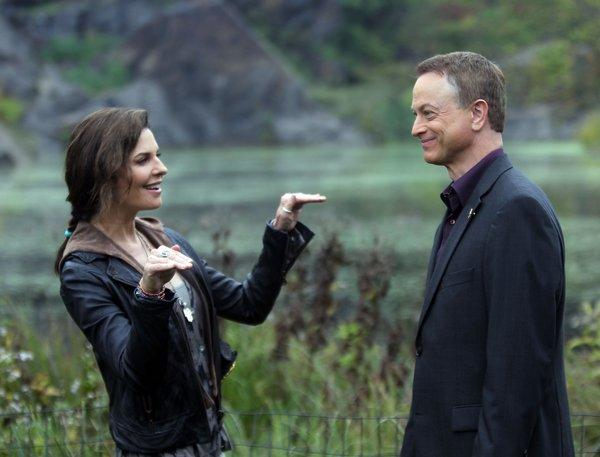"Sela Ward and Gary Sinese star in ""CSI: New York,"" which is on the chopping block."