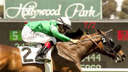 With its announcement Thursday, Hollywood Park did little to refute the theory that horse racing is a sport in need of  hospice.