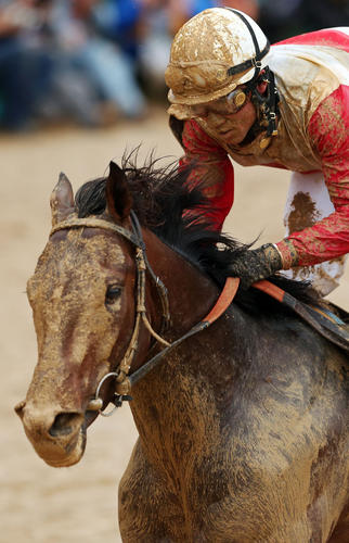 """<b>Jockey</b>: Joel Rosario<br> <b>Trainer</b>: Claude """"Shug"""" McGaughey<br> <b>Owners</b>: Phipps Stable and Stuart Janney III<br> <b>Last race</b>: Won Kentucky Derby by 2 1/2 lengths on May 4.<br> <b>Dam</b>: Lady Liberty; Sire: Malibu Moon<br> <b>Earnings</b>: $2,335,850<br> <b>Of note</b>: Has won his last five races and will likely be at least an even-money favorite in Saturday's Preakness.<br> <b>Comment</b>: Best horse, worst post position. Will need Rosario to prove again he's one of the better riders in the race -- and world. If he gets his lane, he'll win."""