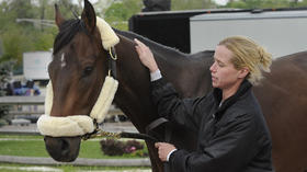 Derby winner Orb arrives in Baltimore for 138th Preakness