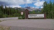 Denali National Park and Preserve is gearing up to open for the summer despite some lingering snow cover.