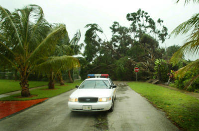 Residents of East Boca Raton felt the early fury of hurricane Frances after a huge ficus tree fell knocking down power lines and blocking the intersection of ne 4th ave and ne 12th street... Heavy rains and winds continued to knock down trees and drench Palm Beach County.