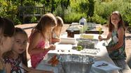 <strong>Learn and Grow Series with Art in the Garden</strong>