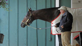 McGaughey stumbled into training but now has Triple Crown shot with Orb