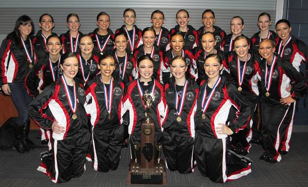 District 207 is prohibiting the coach of the award-winning Maine South Hawkettes from enrolling members in her private dance studio in Niles.