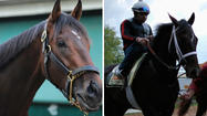 One of the colts entered in Saturday's 138th running of the Preakness Stakes can lay claim to a distinction not shared by seven others:  He's actually finished ahead of the expected favorite Orb in a race.