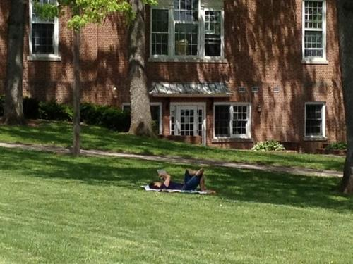 A laid back read in Center Memorial Park by Mary Cheney Library.