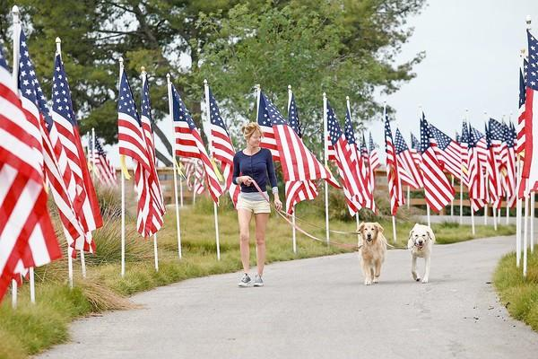 Lisa Westerhout, of Newport Beach, walks Tamara, right, a service dog, and Molly, center, a rescue dog, through the Field of Honor at Castaways Park on Thursday.