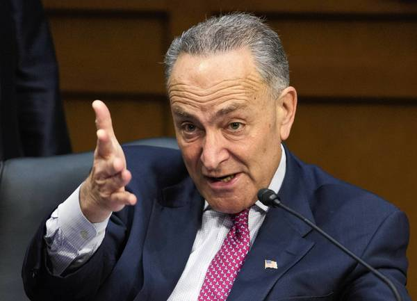 Sen. Charles E. Schumer (D-N.Y.) makes a point in the Senate Judiciary Committee.