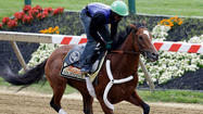 Preakness Stakes analysis and betting tips