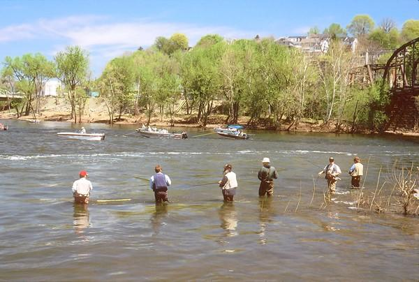 Waders and boaters share the river at the confluence of the Lehigh and Delaware in Easton, a prime spot in late April.