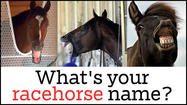What's your racehorse name? [interactive]