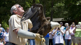 PICTURES: Bald Eagle release in Gloucester Co.