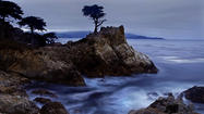 Standing before the Lone Cypress