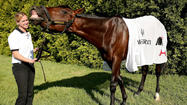 Orb's victory in the Kentucky Derby came as he overcame some significant obstacles.