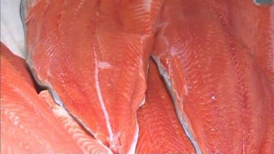 Copper River Salmon Arrives for Consumers in Anchorage