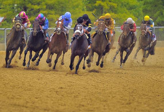 Oxbow, center, leads the pack out of the final turn and down the stretch in the 138th Preakness at Pimlico Race Course.