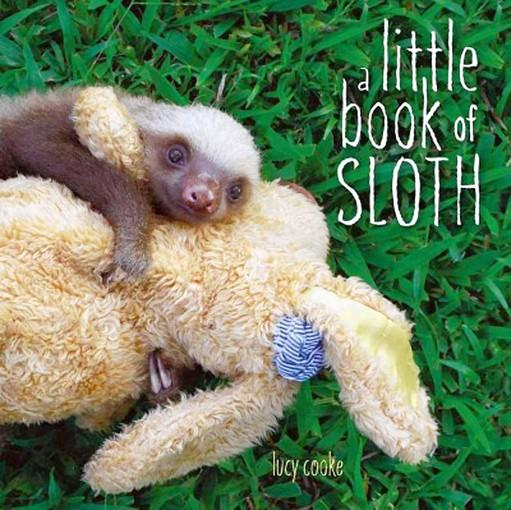 'A Little Book of Sloth' by Lucy Cooke