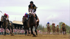 Preakness Day 2013 [Video]