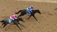 Itsmyluckyday has a productive day with runner-up finish in Preakness