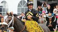 Video: Oxbow wins Preakness