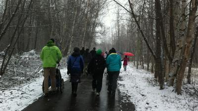 Hundreds Walk in March of Dimes Charity Event on Snowy Morning