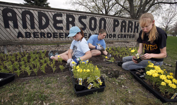Allison Marnette, left, Ashley Gunn, center and Brittany Simon, right, work together to plant marigolds in front of the sign for Anderson Park Wednesday. The trio of college students are working this summer for the Aberdeen Parks, Recreation and Forestry Department. photo by john davis taken 5/15/2013