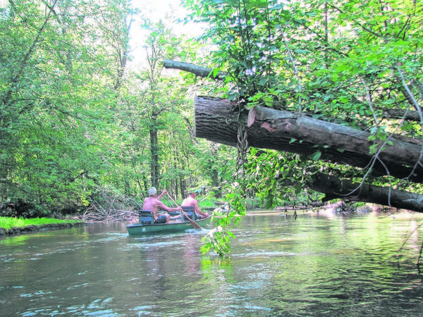 Paddlers make their way along the tall trees by the Fawn River in northern Indiana in a recent summer. At least one new canoe/kayak rental business has opened up along the river...