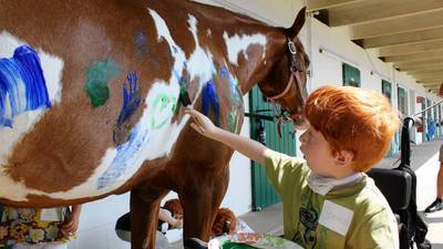 Foster children with disabilities bond with all the pretty horses