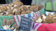PHOTOS: Boyne City National Morel Mushroom Festival