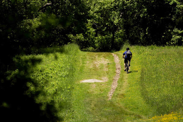 A cyclist takes to the trails at Haley Farm State Park.
