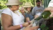 <strong>1. West Virginia Wine & Arts Festival</strong>