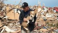 MOORE, Oklahoma -- Emergency workers this morning searched feverishly for survivors in the rubble of homes, schools and a hospital in an Oklahoma City suburb ravaged by a massive Monday afternoon tornado feared to have killed dozens of people and injured well over 200 residents.