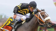 Scenes from the 2013 Preakness Stakes