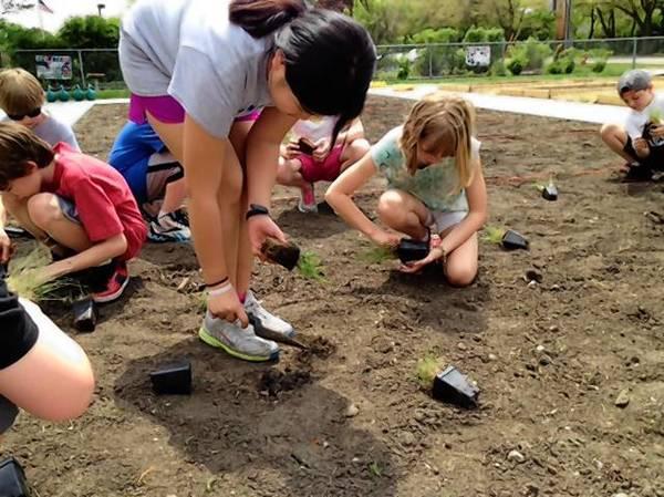 Students at Western Avenue School in Geneva work in the garden.