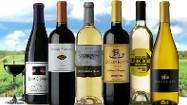 Discover wines from around the world