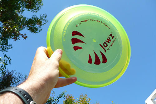 No-hole-in-one dog disc