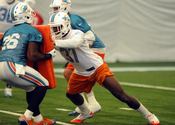 Lamar Miller (26) is viewed as the front runner to become the Dolphin's starting tailback and safety Kelcie McCray (37) is viewed as a contender for the starting safety spot.