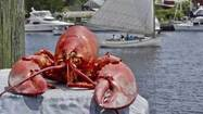 "Mystic Seaport's annual ""Lobster Days"" kicks off Memorial Day weekend again this year. Lobster dinners ""in the rough"" are served up by the Mystic Rotary Club, with all proceeds supporting the club's community organizations and projects."