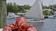 Mystic Seaport Lobster Days