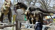 "Where else to see dinosaurs if you can't make it to ""Erth's Dinosaur Petting Zoo"":"