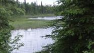 Invasive plants have closed a lake at a state recreation area near Nikiski to planes and boats for the summer, with state and federal workers planning to contain the infestation in its waters.